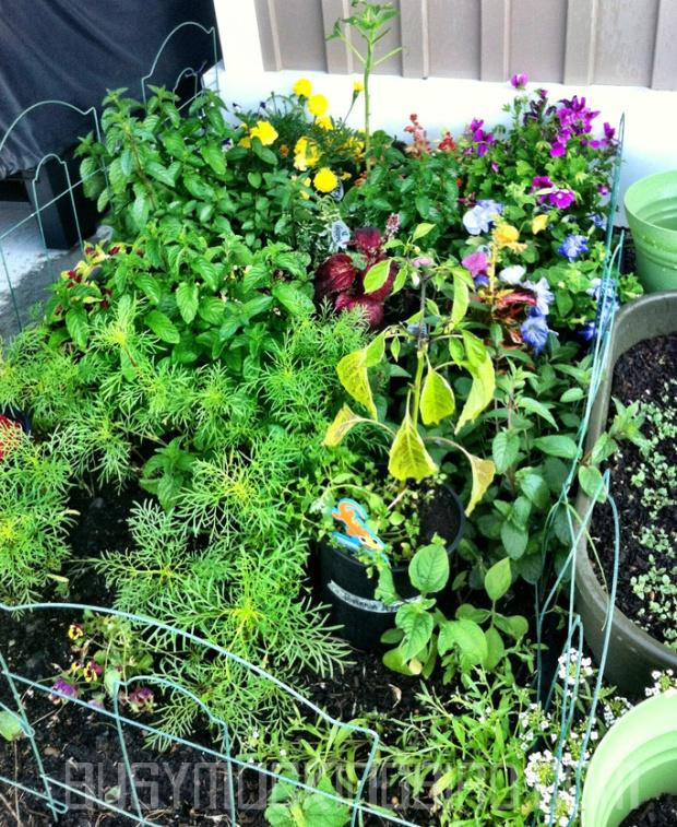 friend garden